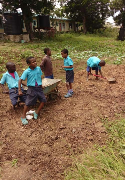 41-ongoing-Shamba-education-project